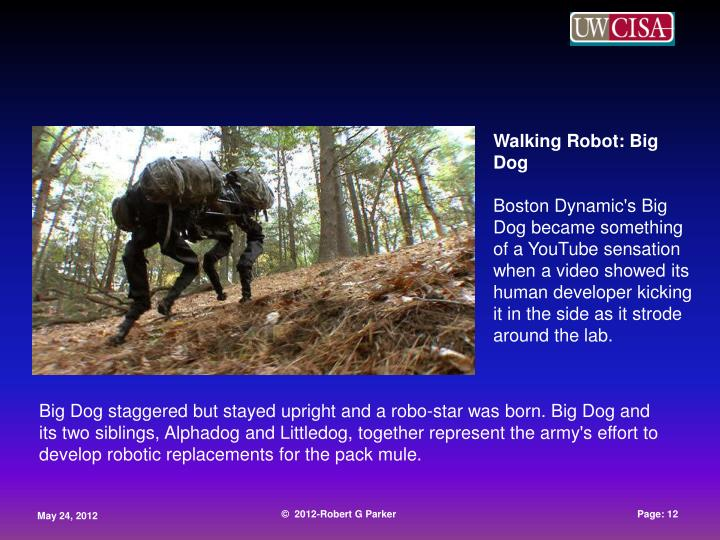 Walking Robot: Big Dog