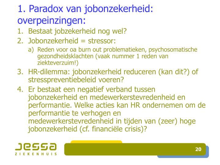 1. Paradox van jobonzekerheid: overpeinzingen: