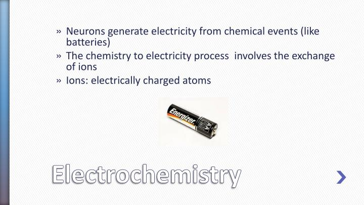 Neurons generate electricity from chemical events (like batteries)