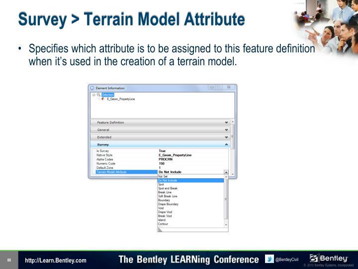Survey > Terrain Model Attribute