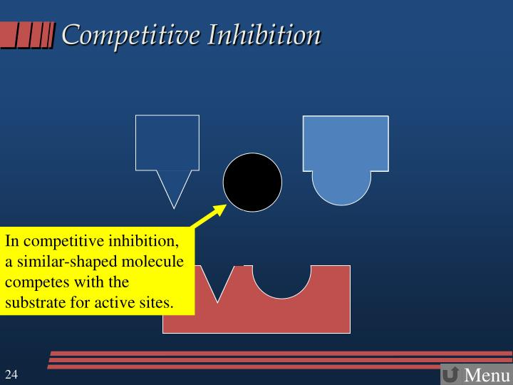 In competitive inhibition, a similar-shaped molecule competes with the substrate for active sites.