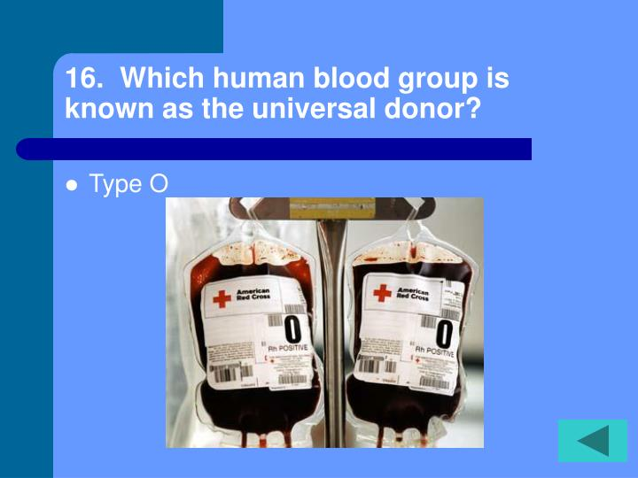 16.  Which human blood group is known as the universal donor?