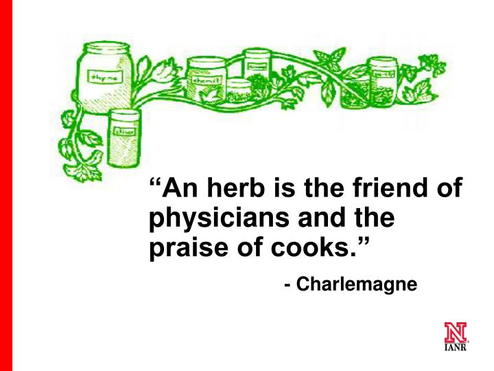 """An herb is the friend of physicians and the praise of cooks."""