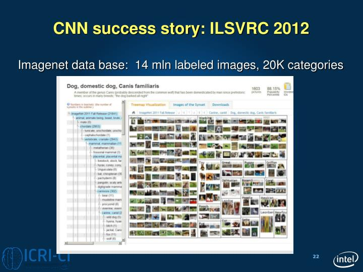 CNN success story