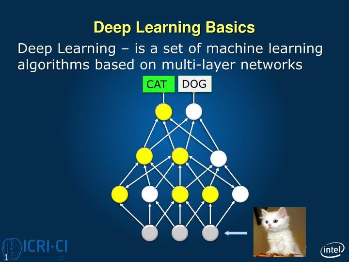 Deep Learning Basics