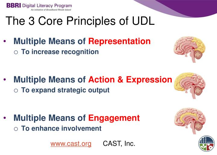 The 3 Core Principles of UDL