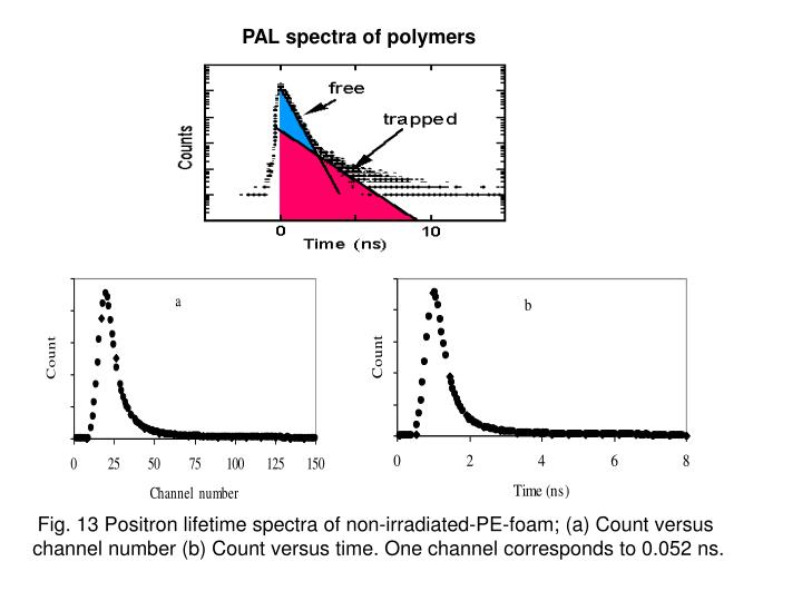 PAL spectra of polymers