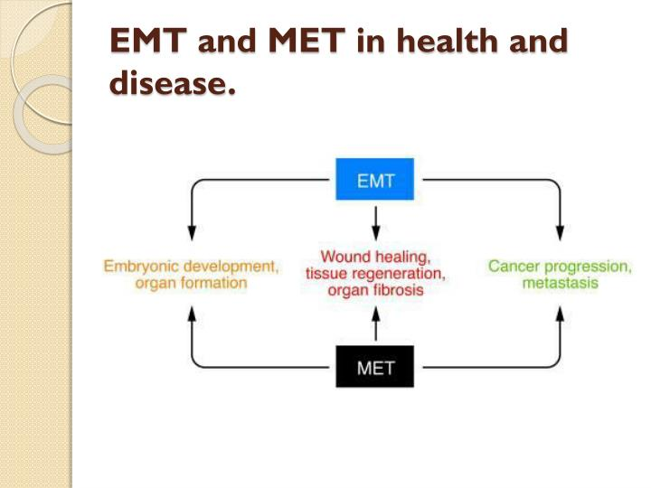 EMT and MET in health and disease