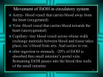 movement of etoh in circulatory system