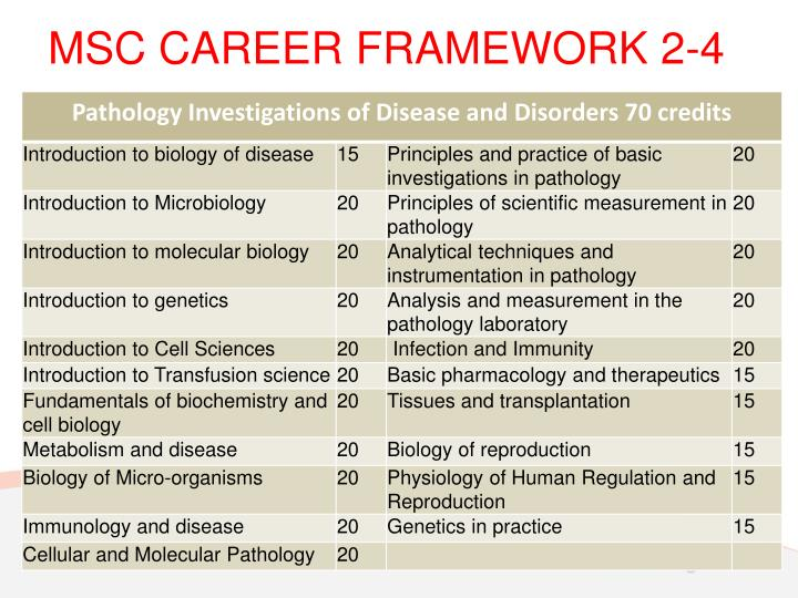 MSC CAREER FRAMEWORK 2-4