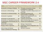 msc career framework 2 42