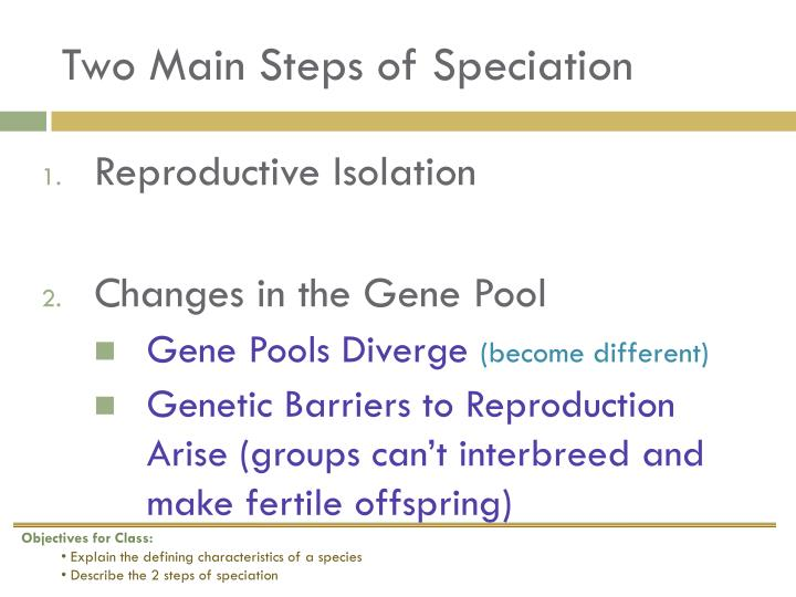 Two main steps of speciation