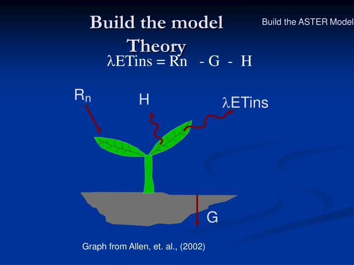 Build the model