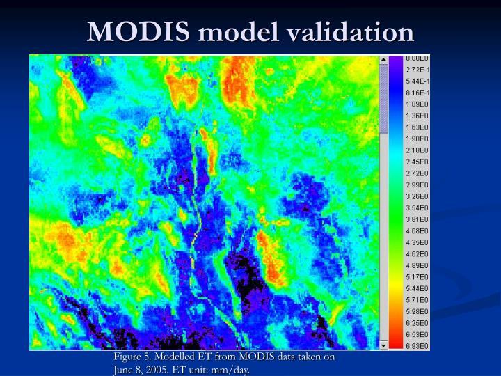 MODIS model validation