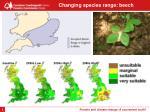 changing species range beech