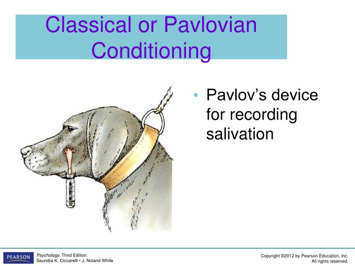 Classical or Pavlovian Conditioning