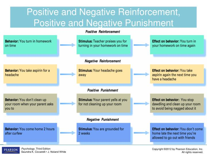 Positive and Negative Reinforcement, Positive and Negative Punishment