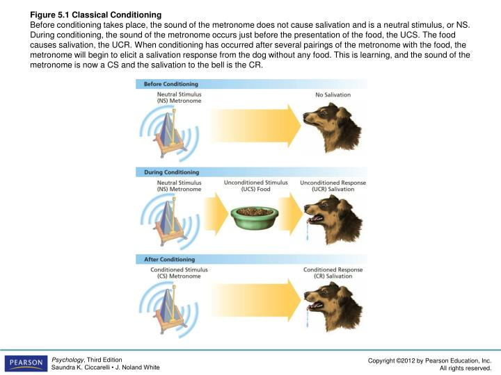 Figure 5.1 Classical Conditioning
