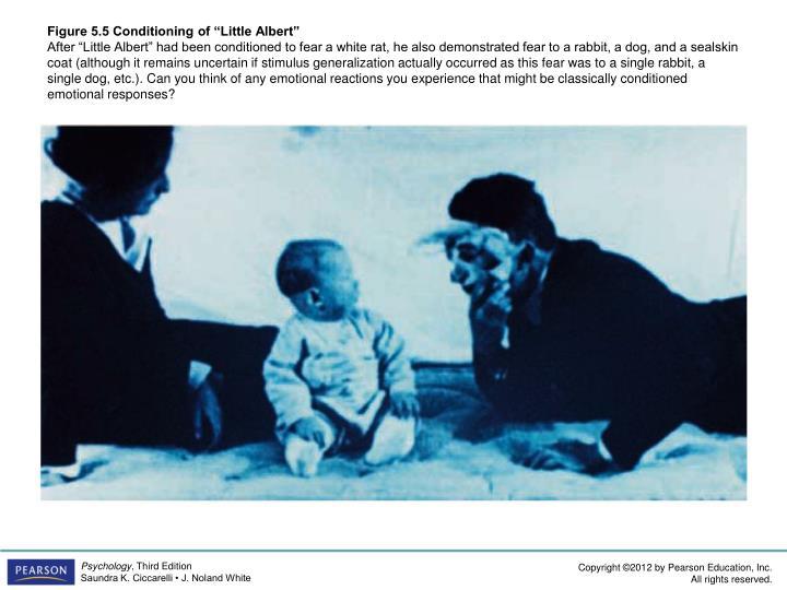 "Figure 5.5 Conditioning of ""Little Albert"""