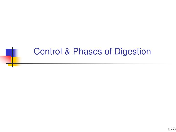 Control & Phases of Digestion