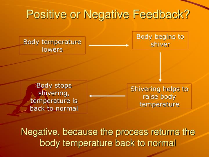 Positive or Negative Feedback?