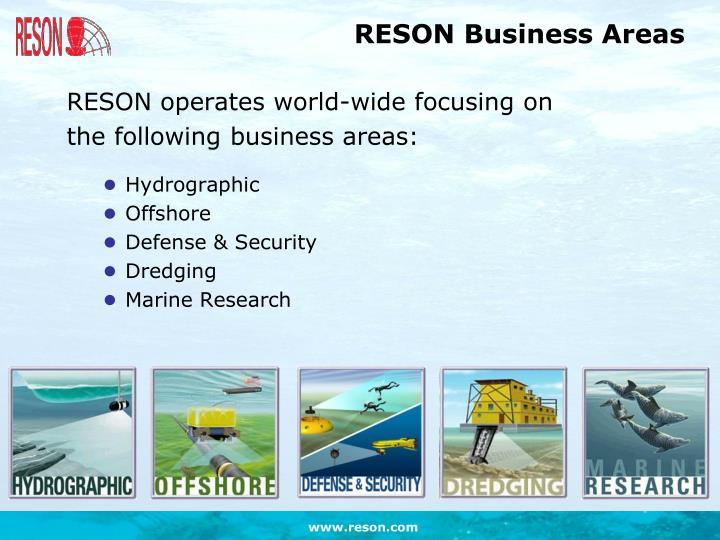Reson business areas