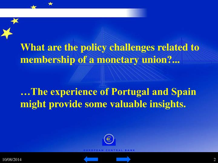 What are the policy challenges related to membership of a monetary union?...