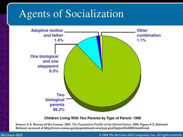 agents of socialization essay 6 The socialization process is a perfect example of this because it is in the actions of the agents of socialization (parents, the media, our schools, our peer groups, even ourselves) that the social world is re-created from generation to generation.