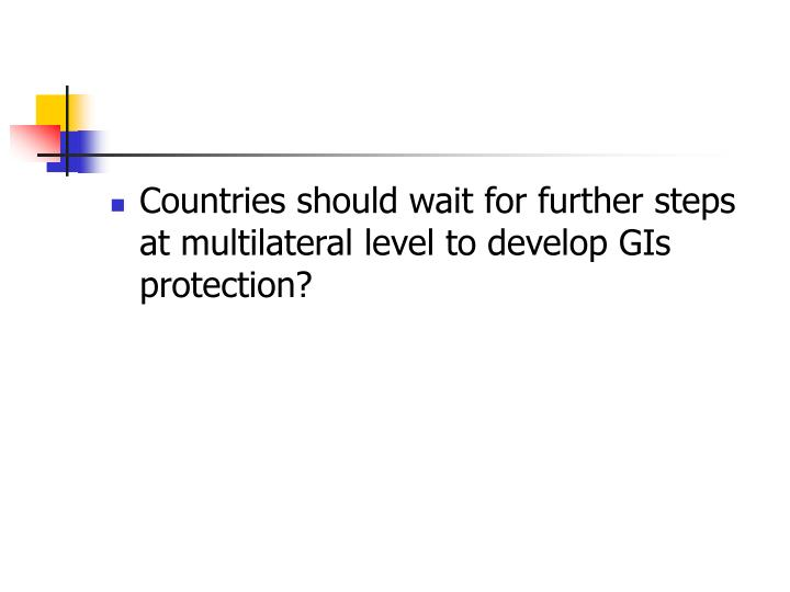 Countries should wait for further steps at multilateral level to develop GIs protection