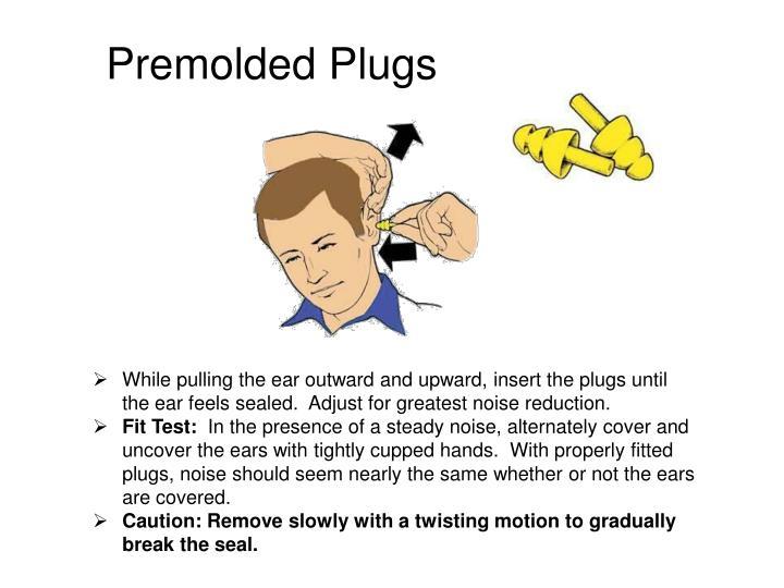 Premolded Plugs