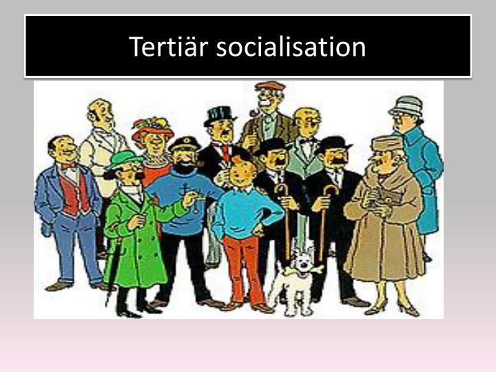 Tertiär socialisation