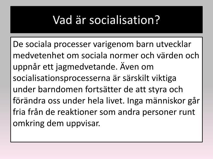 Vad är socialisation?