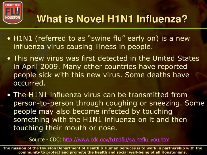 What is novel h1n1 influenza
