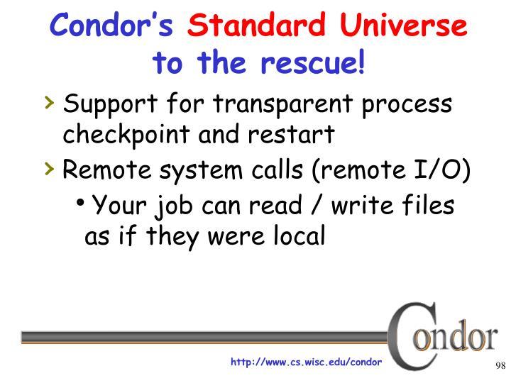 Condor's