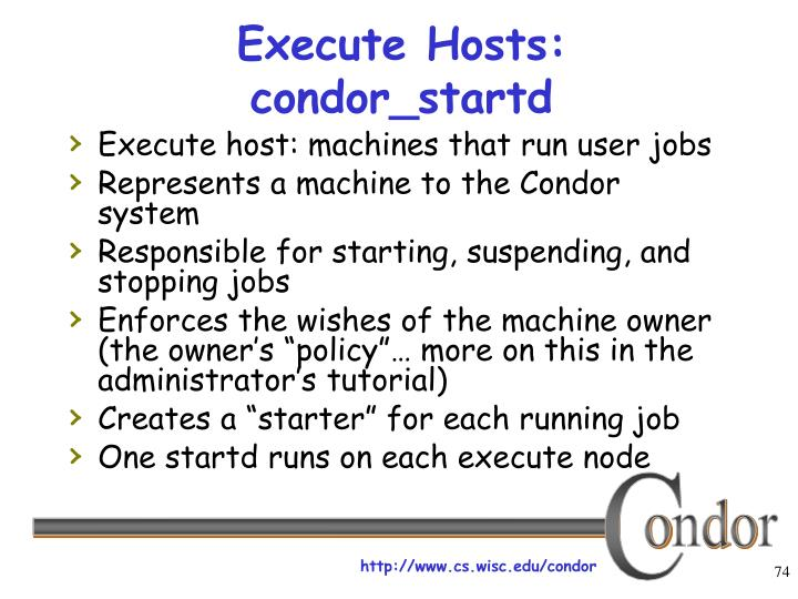 Execute Hosts: