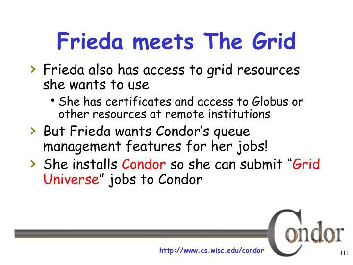 Frieda meets The Grid