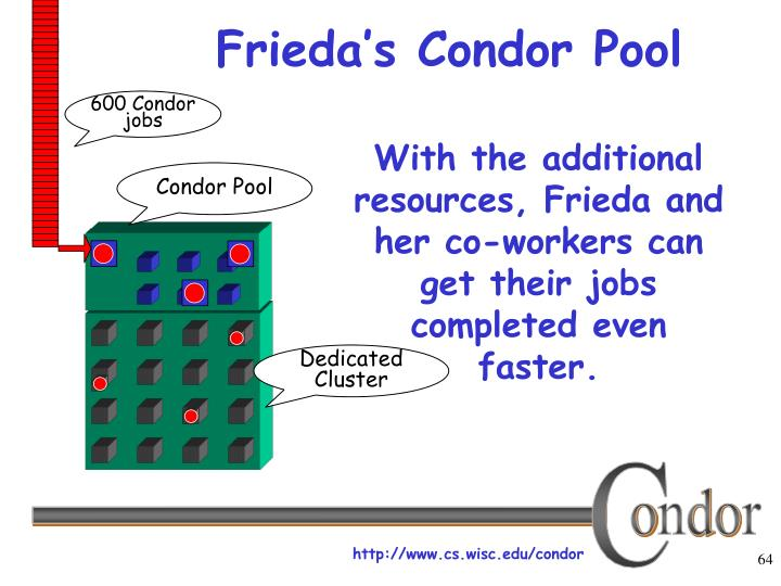 Frieda's Condor Pool