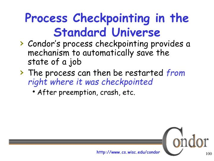 Process Checkpointing in the