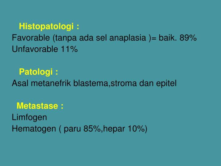 Histopatologi :