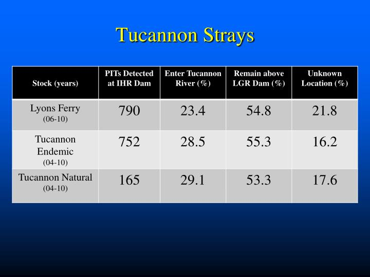 Tucannon Strays