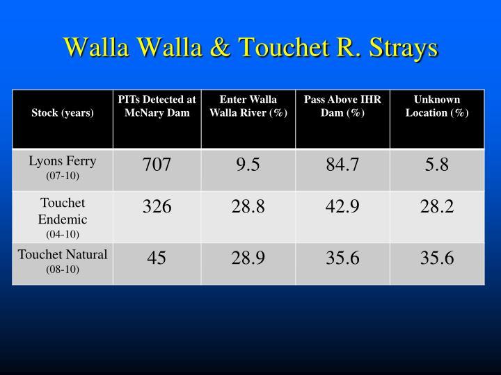 Walla Walla & Touchet R. Strays