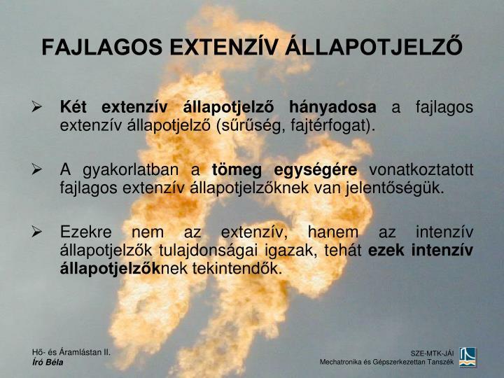 FAJLAGOS EXTENZÍV ÁLLAPOTJELZŐ