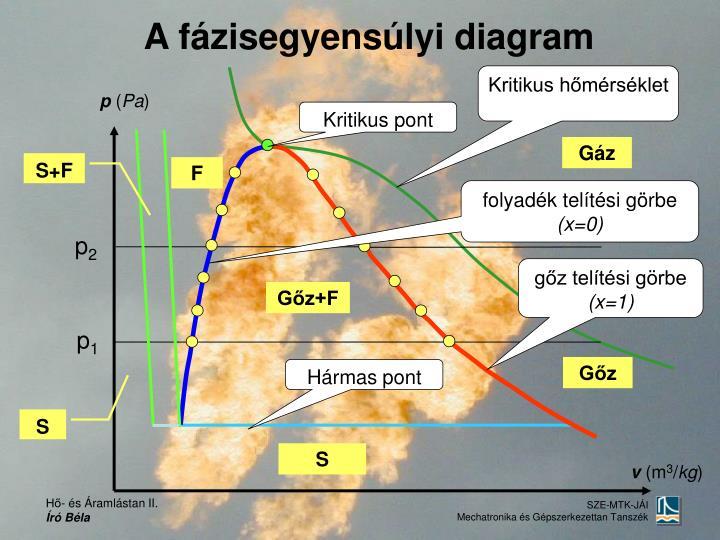 A fázisegyensúlyi diagram