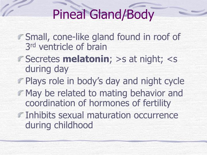 Pineal Gland/Body