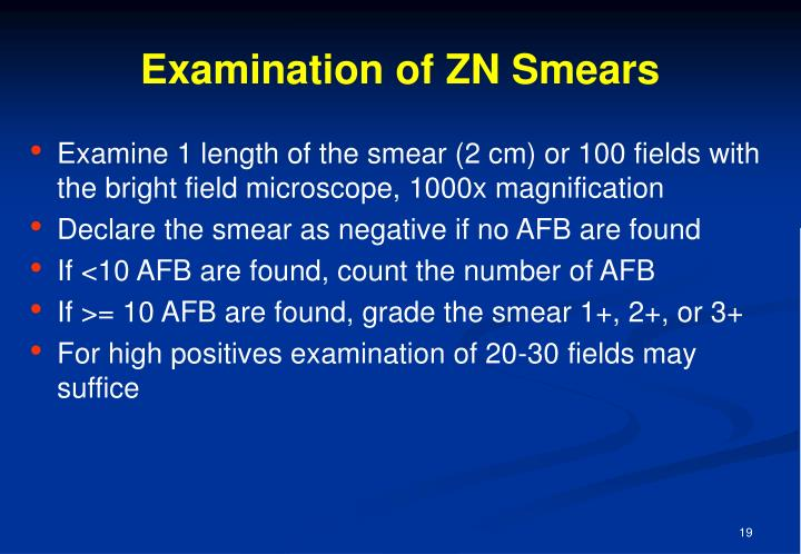 Examination of ZN Smears