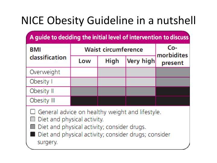 NICE Obesity Guideline in a nutshell