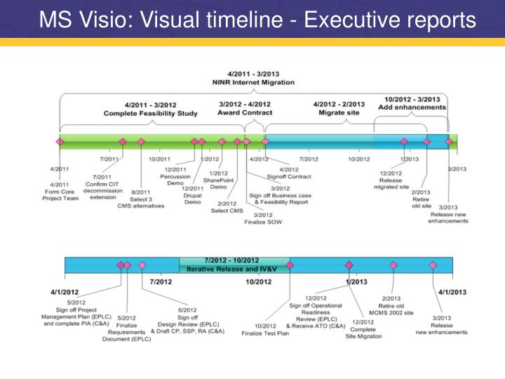 MS Visio: Visual timeline - Executive reports