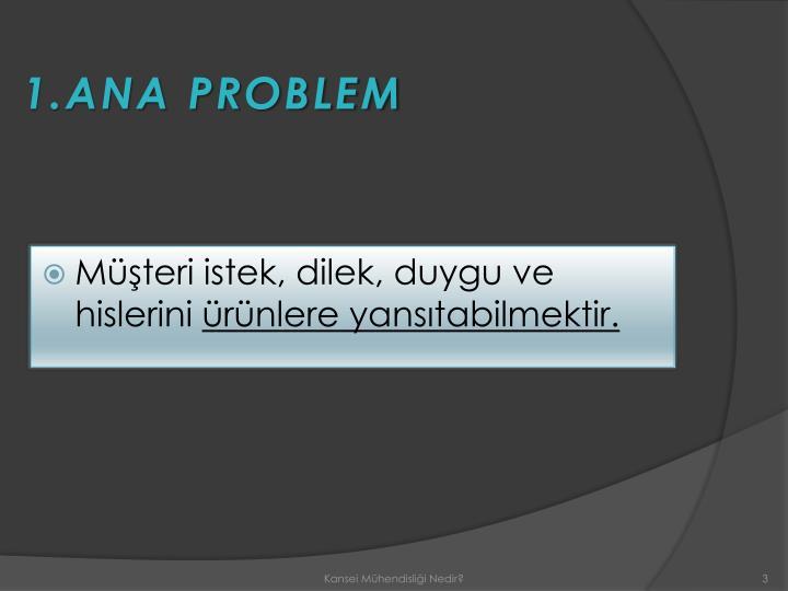 1.ANA PROBLEM