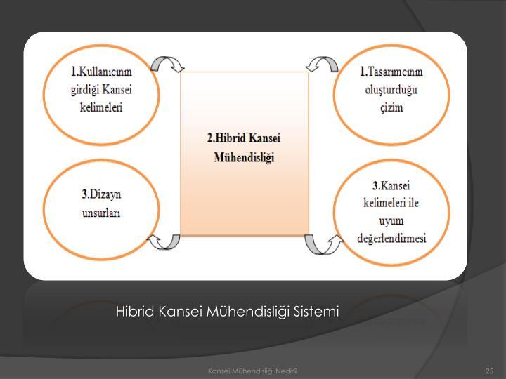 Hibrid Kansei Mühendisliği Sistemi