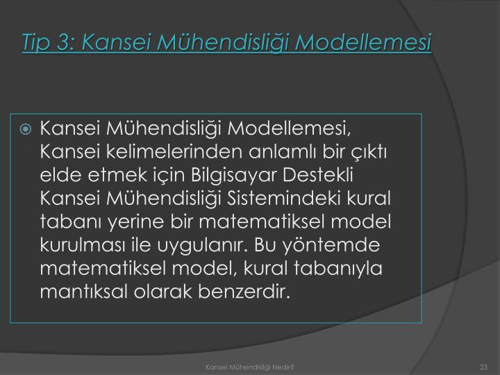 Tip 3: Kansei Mühendisliği Modellemesi